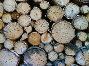 wood-1570901_960_720